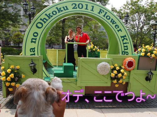 ・搾シ鳳6024516_convert_20110622005538
