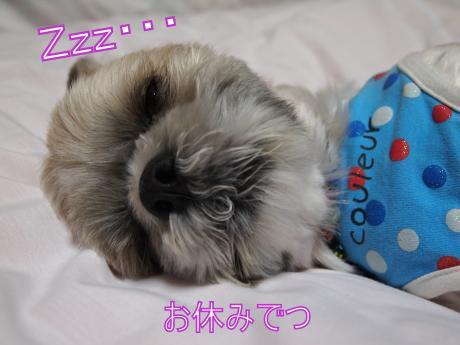 ・搾シ善6024588_convert_20110624163457