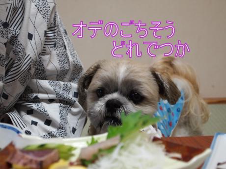 ・搾シ儕6024578_convert_20110624163536