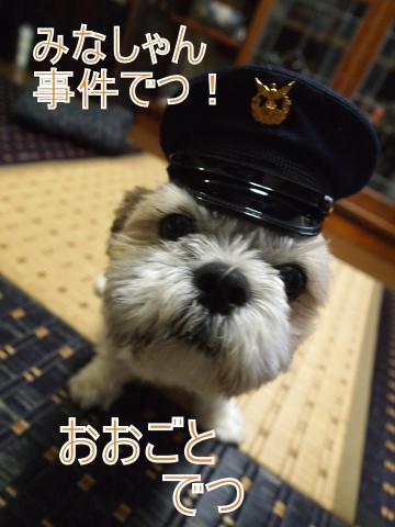・搾シ鳳6284881_convert_20110628025011