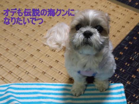 ・搾シ善6304912_convert_20110703011607