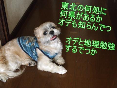 ・搾シ撤7055007_convert_20110705143622