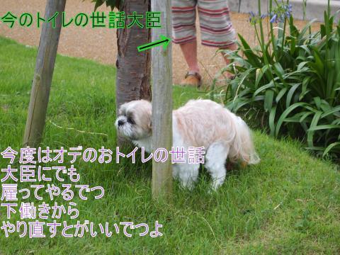 ・搾シ捻7034923_convert_20110705143642