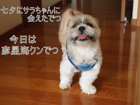 ・搾シ捻7075018_convert_20110709022224