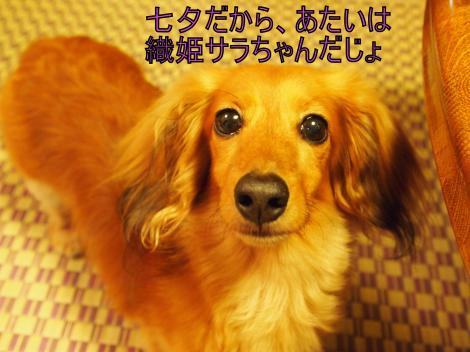 ・搾シ単7075038_convert_20110709022057
