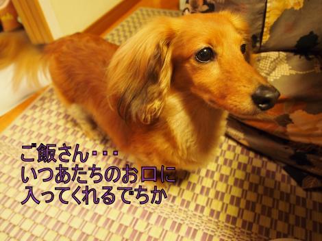 ・搾シ撤7075035_convert_20110709022143