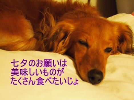 ・搾シ撤7085049_convert_20110709022203