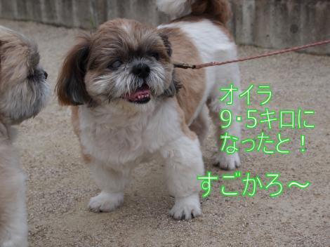 ・搾シ儕7034928_convert_20110711014700