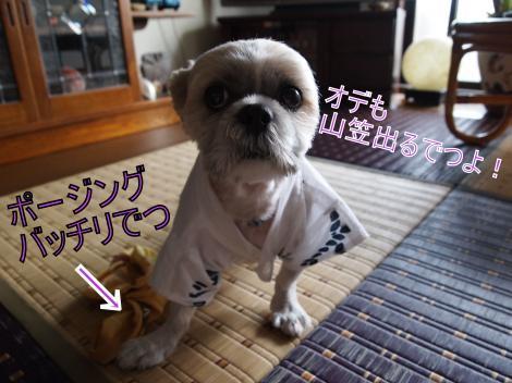 ・搾シ善7135192_convert_20110714011547