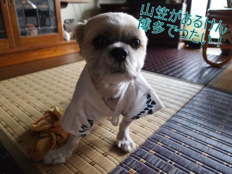 ・搾シ儕7135191_convert_20110715003649