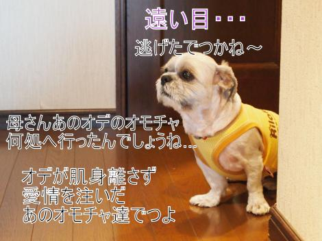 ・搾シ姫7145205_convert_20110716025819