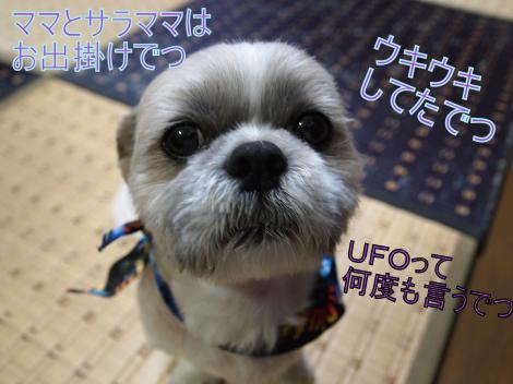 ・搾シ捻5274309_convert_20110718010408
