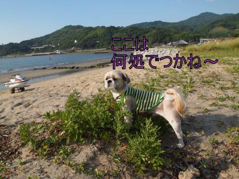 ・搾シ善7175235_convert_20110722011342