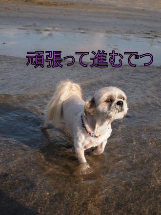 ・搾シ善7175247_convert_20110722011410
