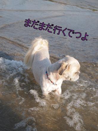 ・搾シ単7175248_convert_20110722011440