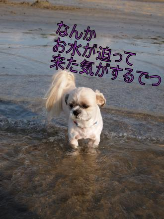 ・搾シ鳳7175246_convert_20110722011515