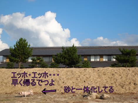 ・搾シ猶7175257_convert_20110722011624