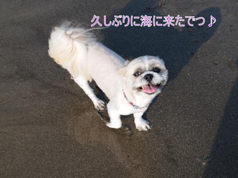 ・搾シ儕7175240_convert_20110722011650