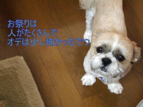 ・搾シ撤7295550_convert_20110801001421