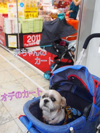 ・搾シ姫8035604_convert_20110807022043