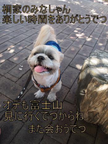 ・搾シ儕8045685_convert_20110811011658