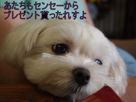・搾シ善8205926_convert_20110821005742