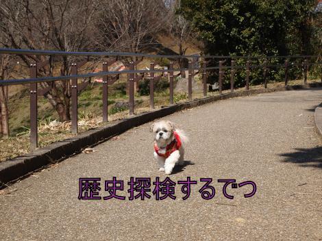 ・搾シ善2211613_convert_20110828225246