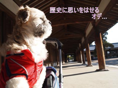 ・搾シ鳳2211680_convert_20110901220832