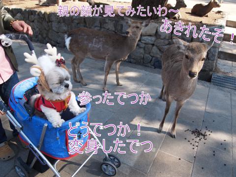 ・搾シ鳳2221730_convert_20110903032015