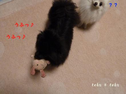 002_20111031215012.jpg