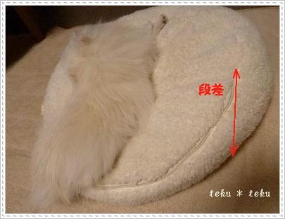 002_20120208000614.jpg