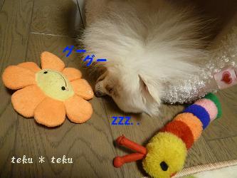 003_20111202213610.jpg
