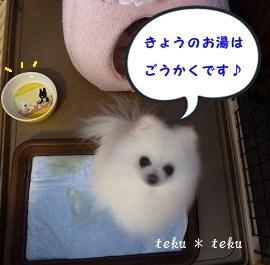 003_20120118220317.jpg