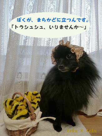 010_20111222221329.jpg