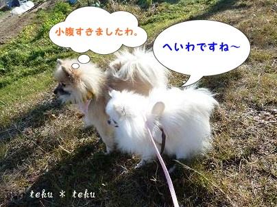 011_20120118214225.jpg
