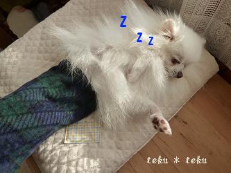 012_20111207214041.jpg