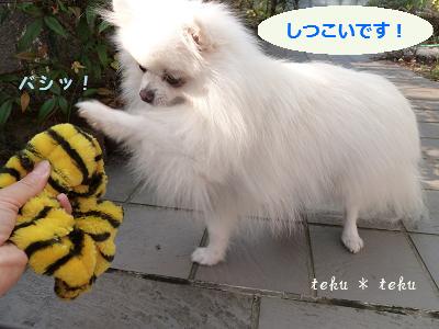 015_20111204164639.jpg