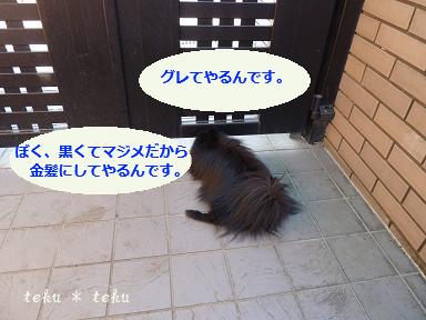 022_20111115231227.jpg