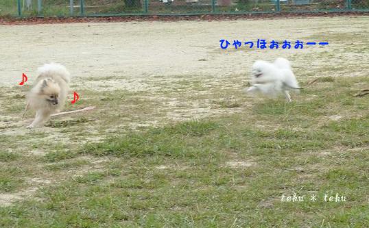 033_20111130223010.jpg