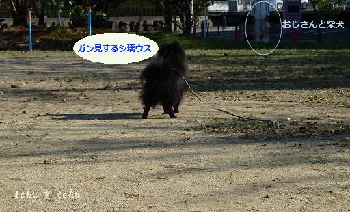 045_20111108174652.jpg