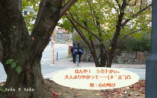 047_20111110182019.jpg
