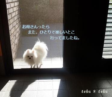 050_20111126232533.jpg