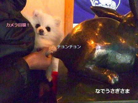 miwa_20120106211418.jpg