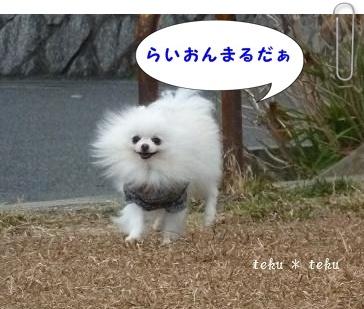 ne2_20120117160036.jpg