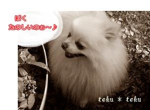 ne8_20120323220000.jpg