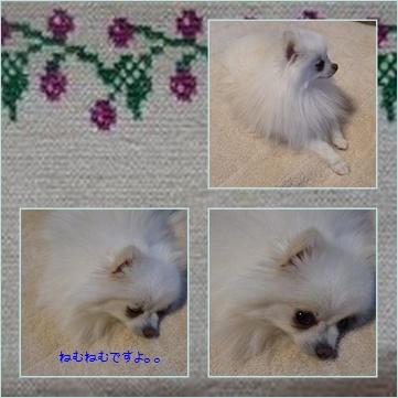 page_20120225204203.jpg