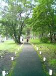 歩道(昼)