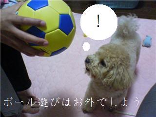 NEWサッカーボール