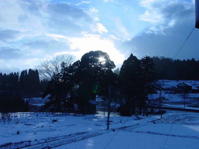 2007電信柱アリ雪景色