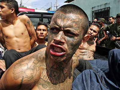 PICS MS-13 Tattoos PHOTOS MS-13 Tattoos IMAGES MS-13 Tattoos WALLPAPERS